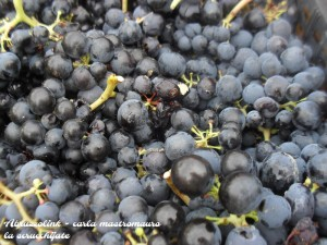 La scrucchijate - marmellata d'uva