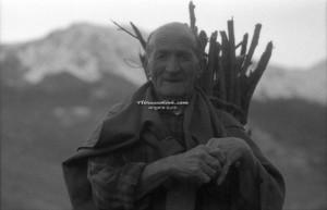 Fascine - Paolo Dell'Elce