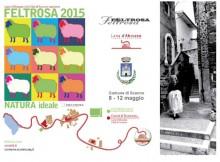 Feltrosa2015 Programma