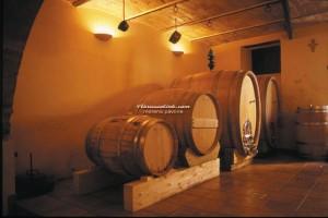 abruzzolink-morena-pavone-vino-campli-2