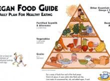 Guida all'alimentazione vegana