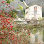 La chiesa sul Lago